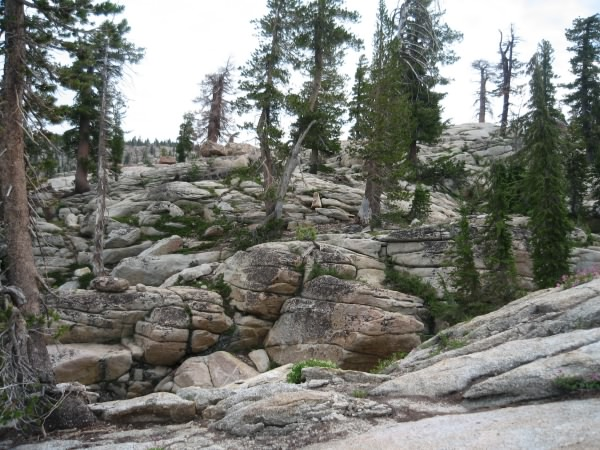 Rocky hillside, Emigrant Wilderness