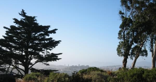 Tank Hill view